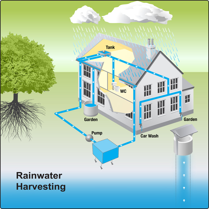 Basic Rainwater Harvesting - Wolf Creek Company