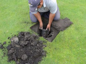 sprinkler-replacement