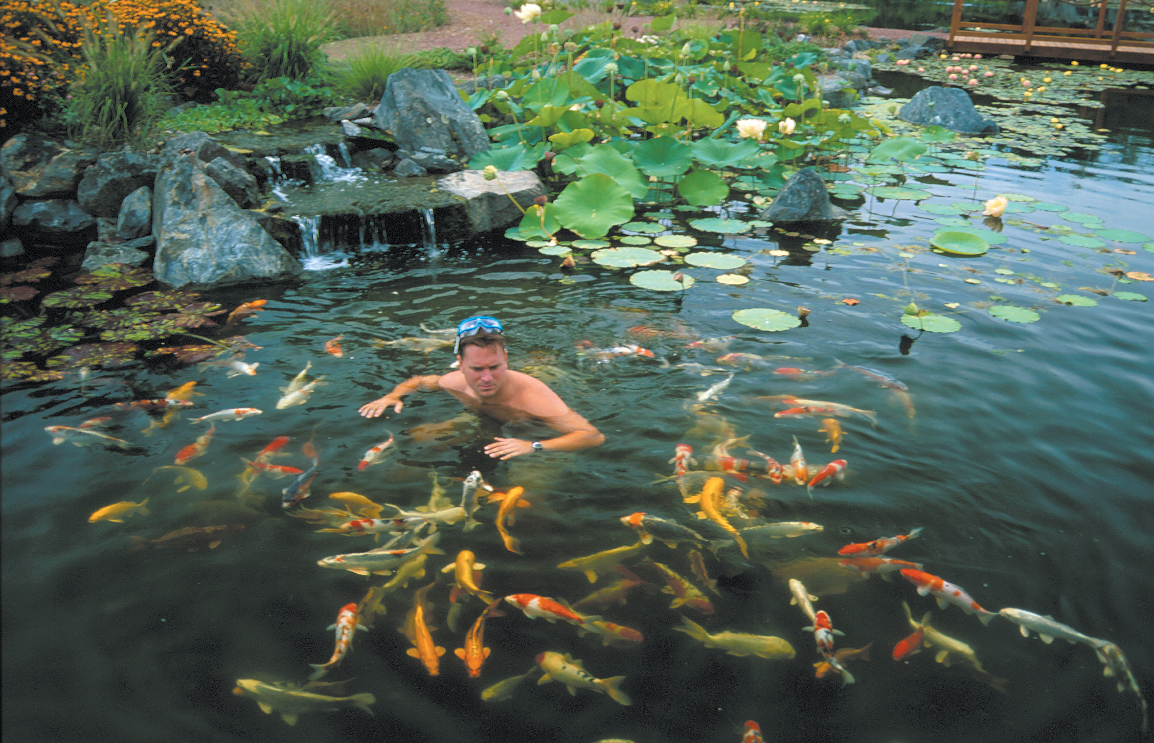 PONDLESS WATER FEATURES Archives Wolf Creek Company